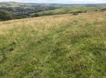 Land_Bacup_pasture